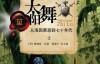 太阳舞-pdf,epub,mobi,txt,azw3电子书下载
